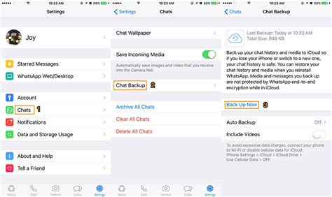 How to Restore WhatsApp Call Logs/Messages on iPhone