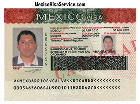 TEMPORARY AND PERMANENT MEXICO RESIDENT VISA CARD FM2 FM3 FMM