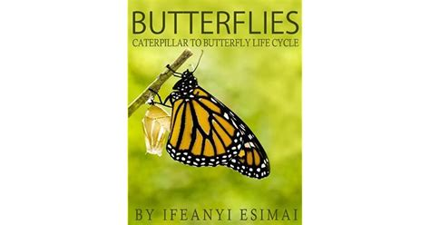 Butterflies: Butterfly Book for kids - Fun facts about