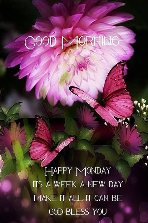 Good Morning New Week And New Day Pictures, Photos, and